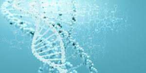 Human Molecular Genetics at ICGEB