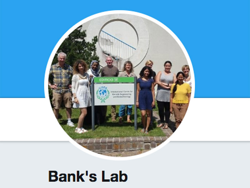 Bank's lab on twitter