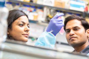 ICGEB Biotechnology Development Training