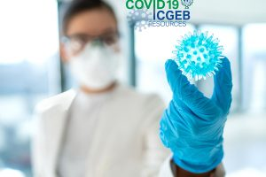Coronavirus lab research: finding a cure - corona virus blue model of COVID-19