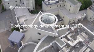 Biotechnology Development at ICGEB Trieste