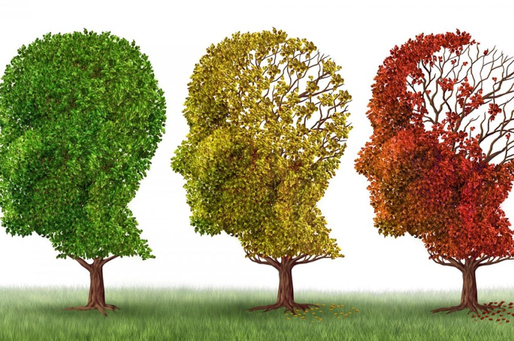 Scientific team discovers protein that protects the cellular nucleus from Alzheimer's disease